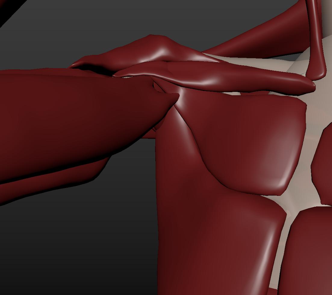 image shoulder-crushed.png