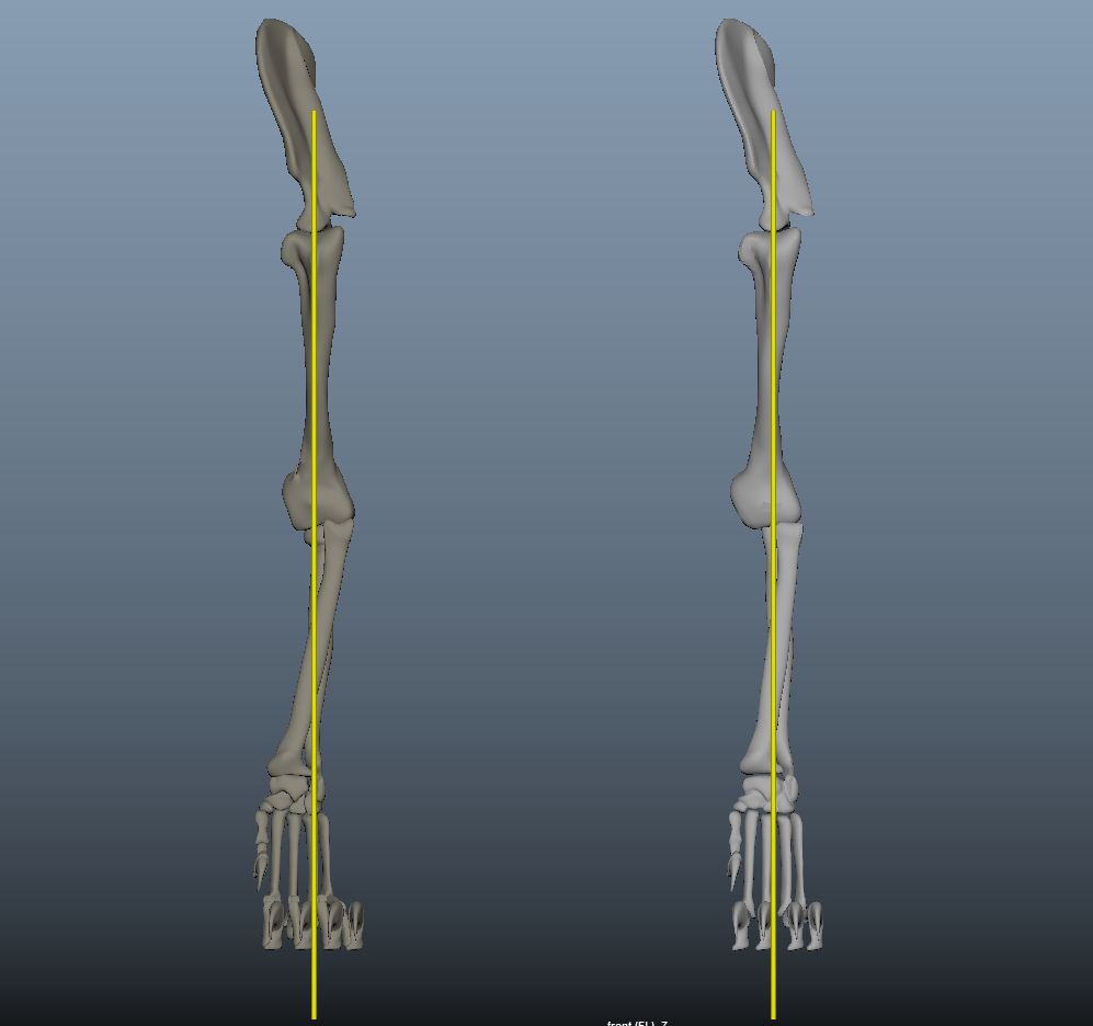 image front-leg.png