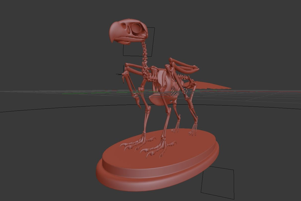 image skeleton6.jpeg