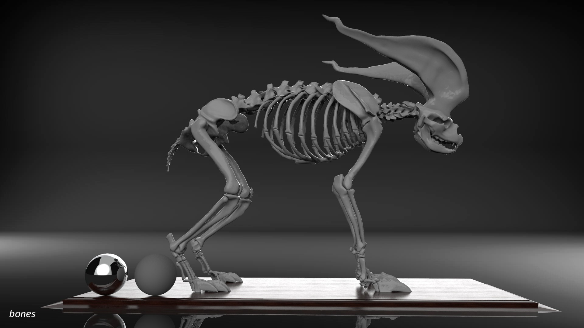 image elemex-bones.jpeg