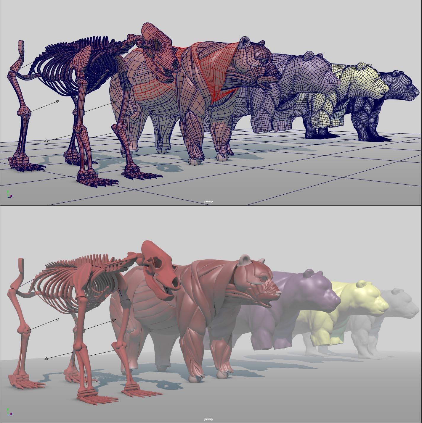 image bear-wip2.jpeg